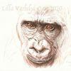 Tuschmalerei, Wildlifart, Gorilla, Tuschezeichnung
