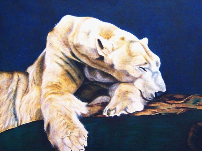 Bär, Harzölmalerei, Zoo, Tierportrait, Realistischte malerei, Eisbär