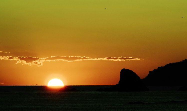 Wolken, Felsen, Feuerball, Meer, Sonnenuntergang, Vogel