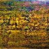 Landschaft, Zweig, Horizont, Rosa