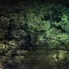 Tod, Baum, Geheimnis, Sumpf