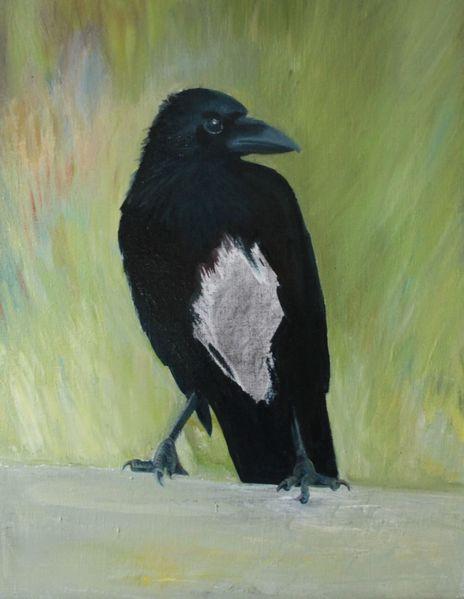 Rabe, Schwarz, Malerei