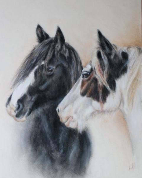 Pferdezeichnung, Tinker, Pferdeportrait, Zeichnungen