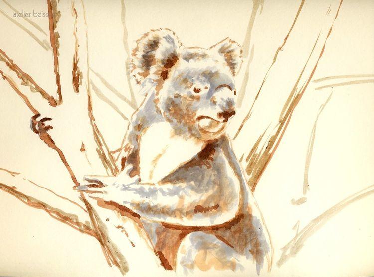 Zoo, Leipzig, Australien, Koala, Mischtechnik