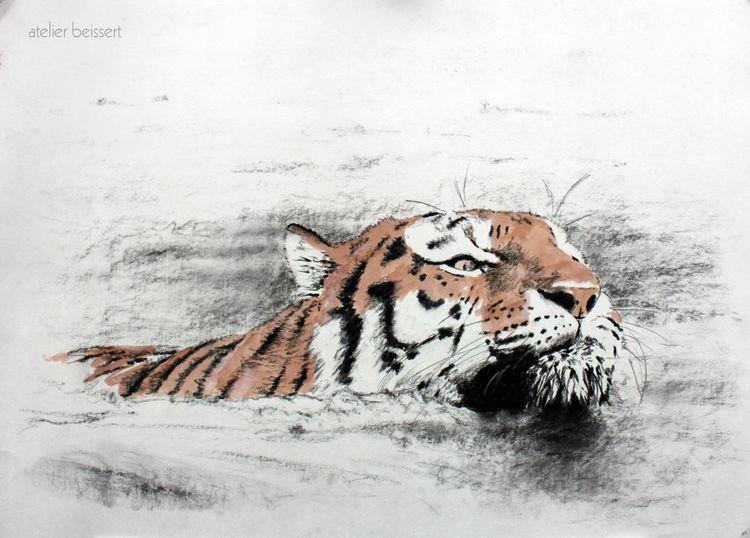 Wasser, Tiger, Zeichnung, Zoo, Tomak, Leipzig