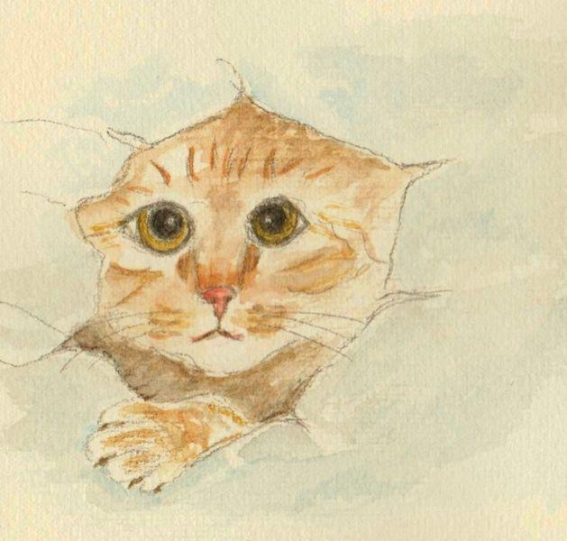 Katze, Neugier, Aquarellmalerei, Tiere, Aquarell