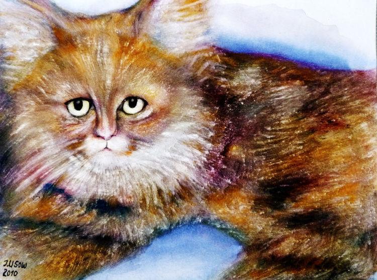Kather, Katze, Natur, Tiere, Aquarell