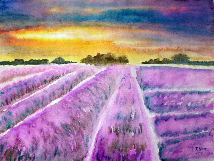 Natur, Provence, Lavendelfed, Landschaft, Aquarellmalerei, Aquarell