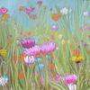 Blumen, Wiese, Bunt, Grün