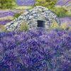 Landschaft, Lavendel, Borie, Malerei