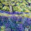 Provence, Lavendel, Landschaft, Malerei