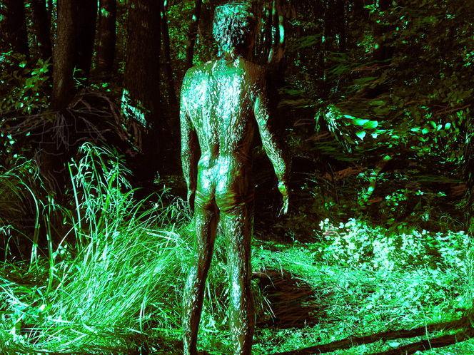 Outsider art, Fotografie, Konzept, Natur, Teil