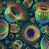 Polypen I - polypen, cnidaria, nesseltiere, tiere, fauna, wasser, submarin, biologie, zoologie, organismen, wesen, schwarm, bunt, spektralfarben, irisierend, irisieren, schimmer, kugelförmig, sphärisch, globulär, mund, öffnung, mantel, transparent, tentakeln, stachel