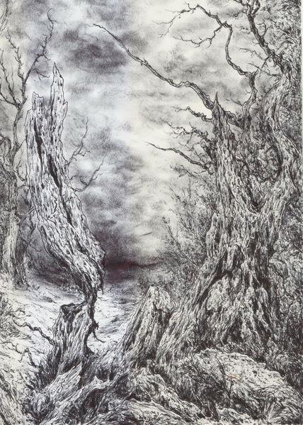 Baum, Wald, Alte meister, Wolken, Dunkel, Mystik