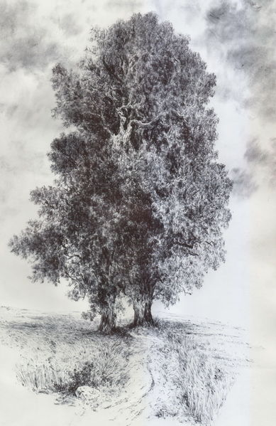 Baum, Landschaft, Acker, Threes, Alte meister, Feld
