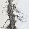 Winter, Baum, Landschaft, Dunkel