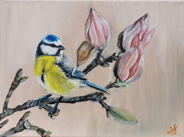 Magnolien, Frühling, Vogel, Blaumeise, Malerei