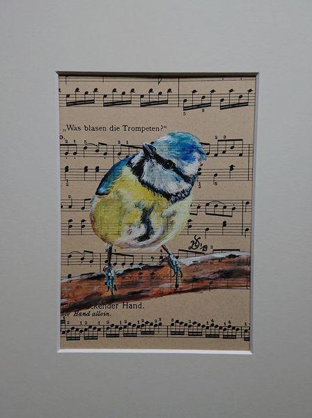 Blaumeise, Vogel, Noten, Malerei