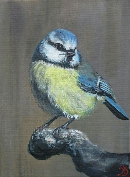Vogel, Blaumeise, Äste, Malerei
