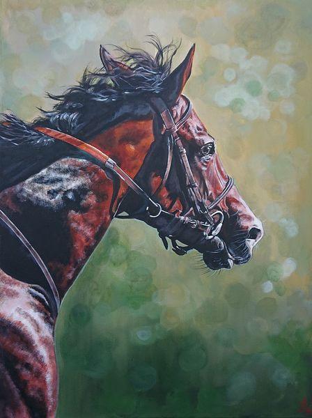 Trense, Pferdekopf, Pferde, Pferderennen, Malerei
