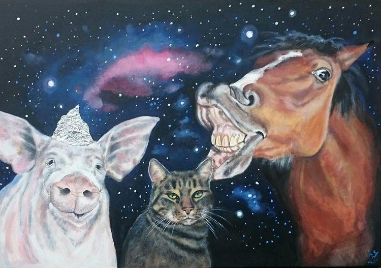 Aluhut, Kater, Pferde, Universum, Stern, Schwein