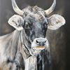 Rind, Grauvieh, Kuh, Malerei
