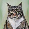 Mieze, Katze, Mäuschen, Malerei