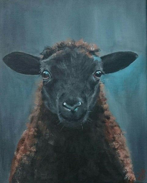Schwarzes schaf, Lamm, Schaf, Malerei