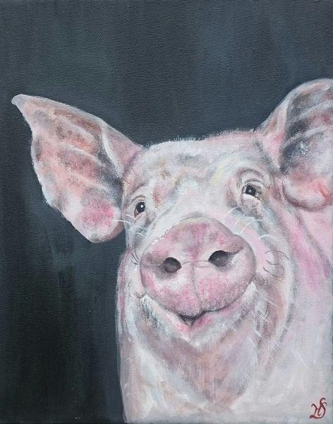 Ferkel, Tierportrait, Schwein, Eber, Malerei,