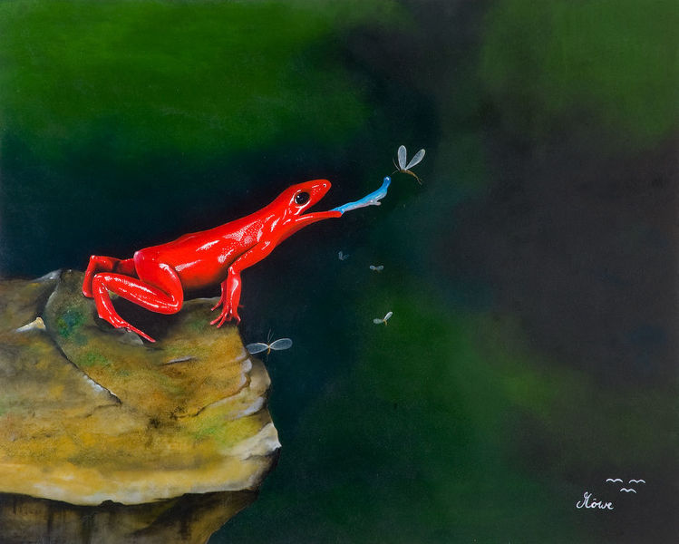 Frosch, Amphibien, Tiere, Malerei