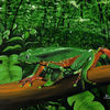 Riesenmaki - Amphibien , Tiere , Frösche , Wasser ,