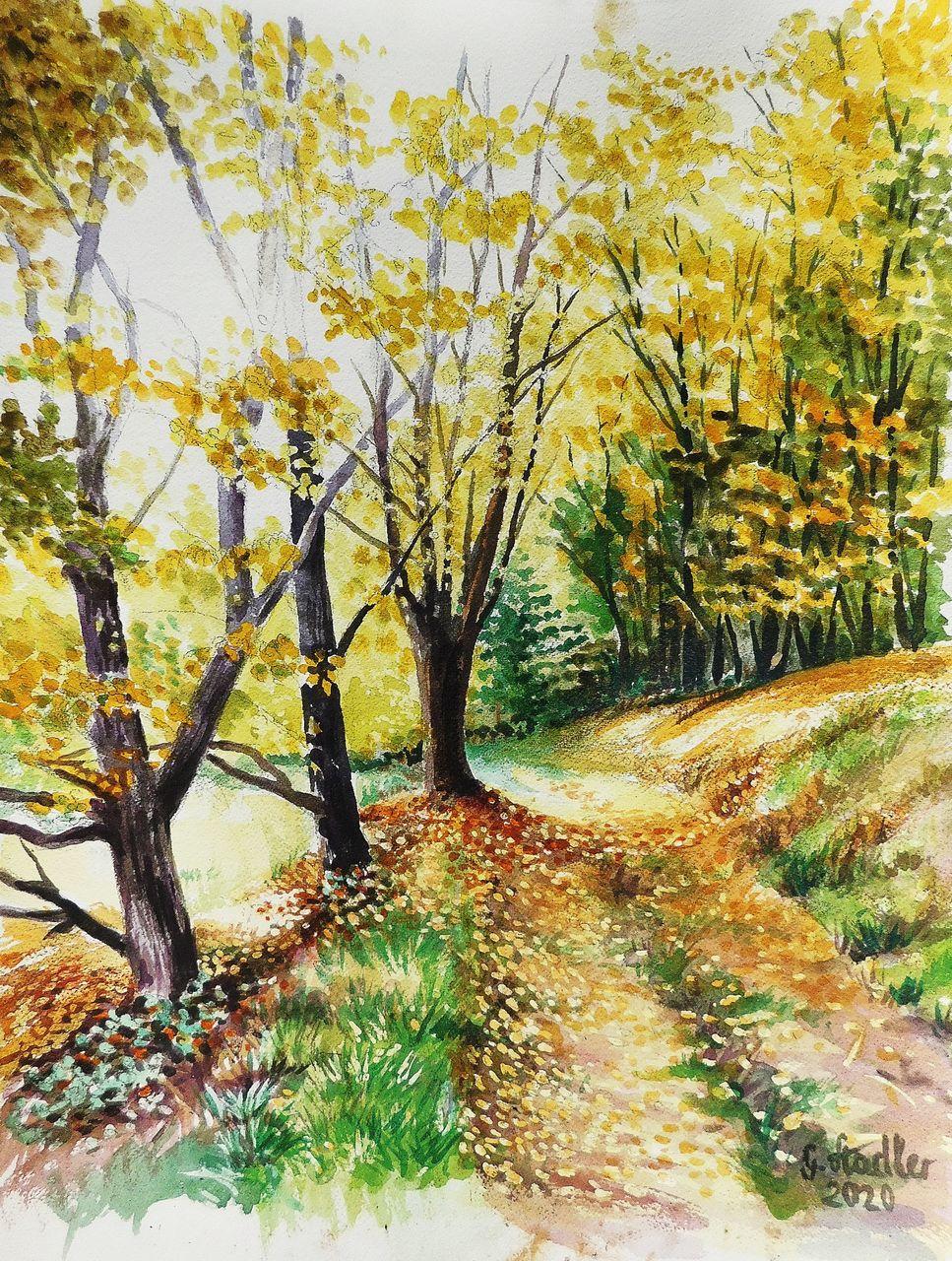Herbst Im Ernsttal Aquarellmalerei Landschaft Natur Wald Von Gunter Bei Kunstnet