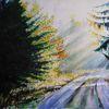 Jahreszeiten, Sonne, Odenwald, Herbstwald