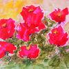 Rose, Sommer, Aquarellmalerei, Tusche