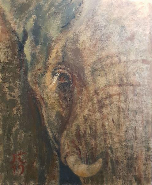 Blut, Augen, Rot, Elefant, Ocker, Malerei