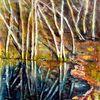 Birken, Licht, Wasser spiegelungen, Natur