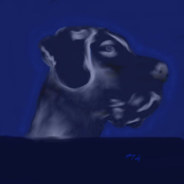Digital, Hund, Dogge, Blau, Digitale kunst
