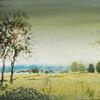 Gegenlicht, Landschaft, Baum, Sonne