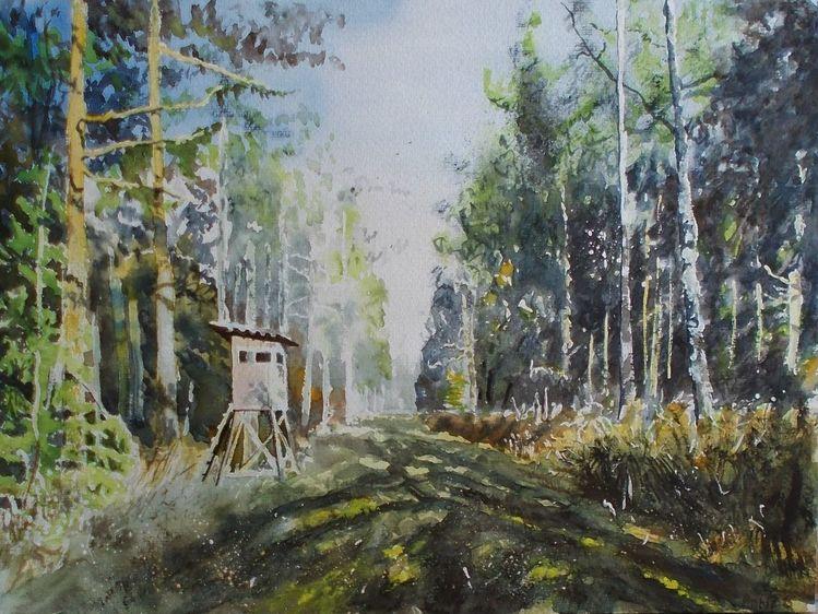 Hochsitz, Baum, Weg, Natur, Wald, Licht