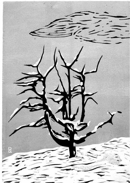 Baum, Schnee, Winter, Druckgrafik, Stolz