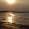 Meer, Strand, Nieuwvliet, Sonnenuntergang