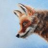 Ölmalerei, Realismus, Tierportrait, Tiermalerei