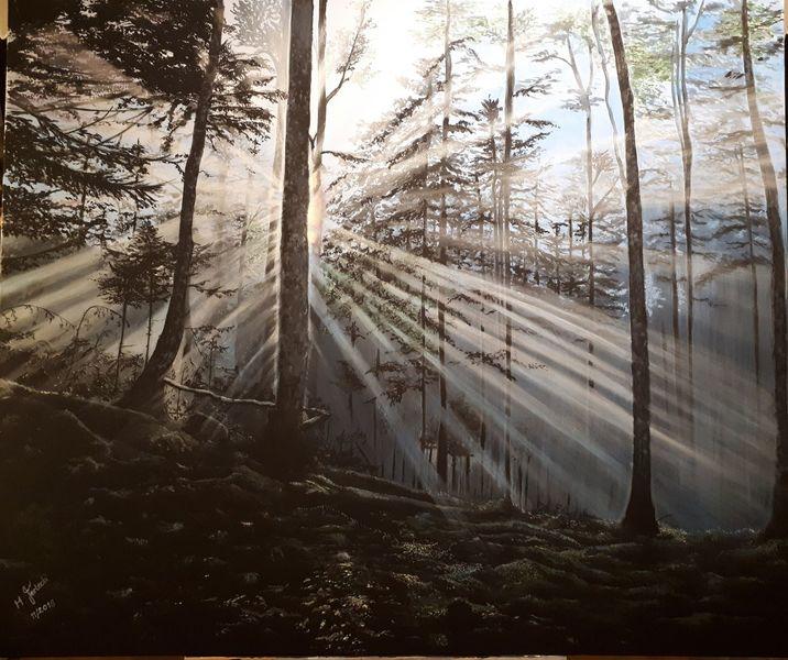 Mystik, Baum, Wald, Licht, Schatten, Sonnenstrahlen