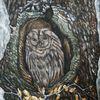 Kindskopf, Baum, Eule auf baum, Eule