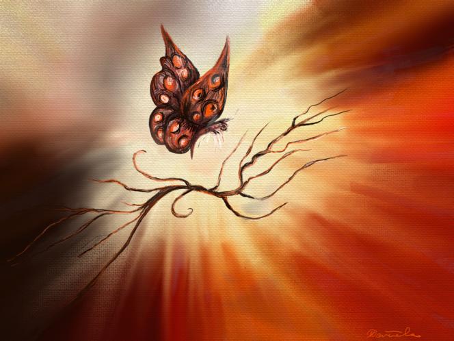 Schmetterling, Surreal, Licht, Fantasie, Digitale kunst