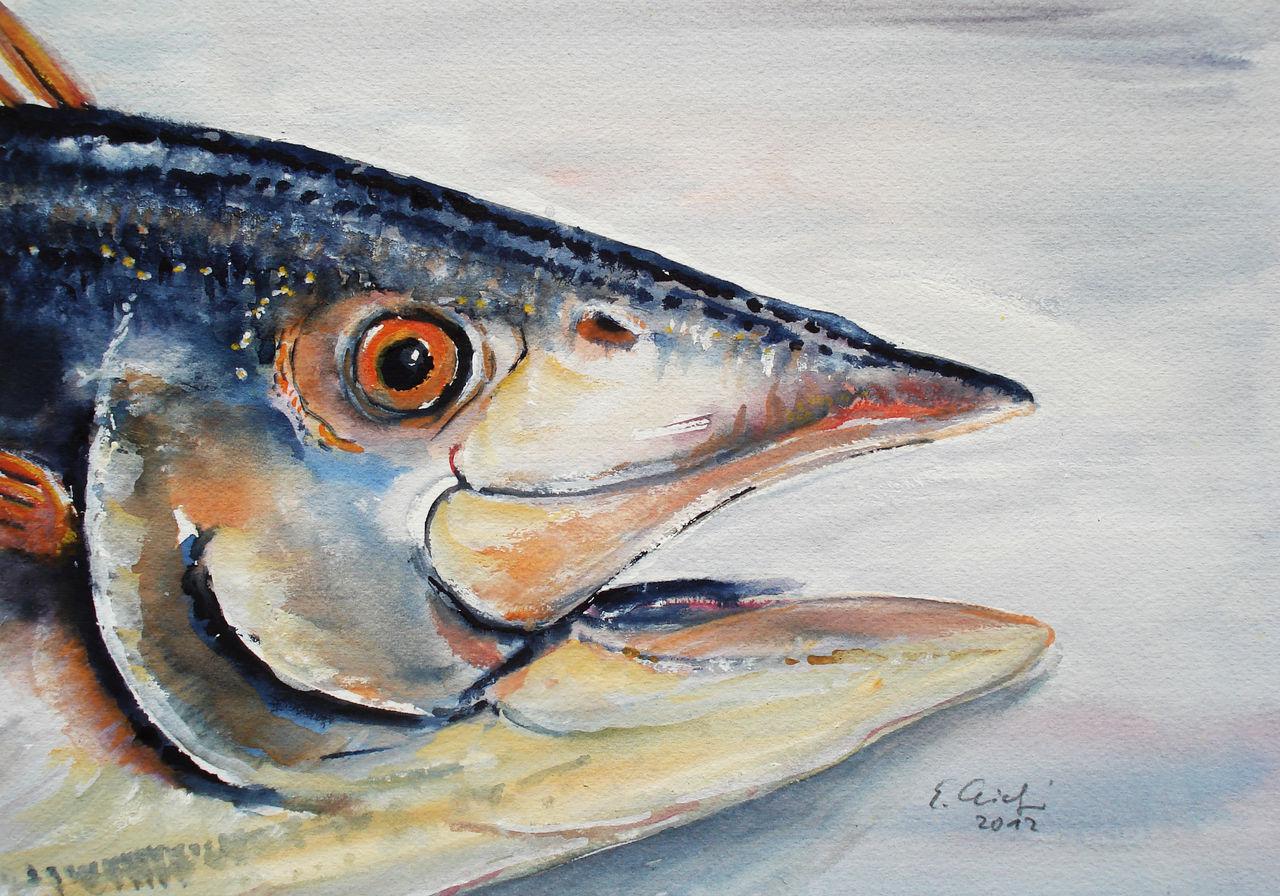 Fischkopf 3 - Stillleben, Fisch, Aquarell von Evelyn