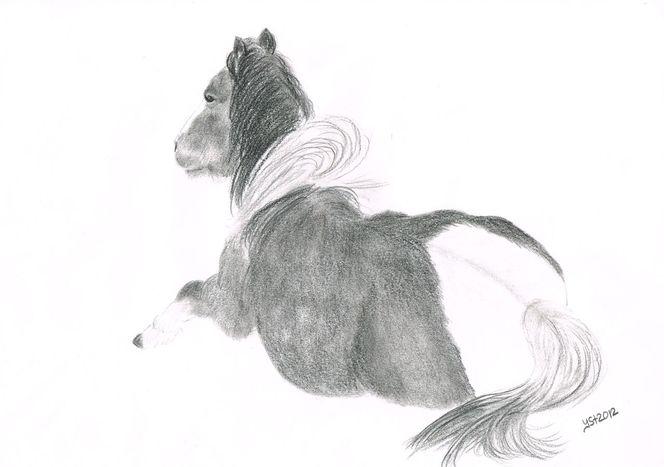 Porträtmalerei, Pferdezeichnung, Schutz, Fohlen, In bewegung, Pastellmalerei