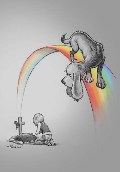 Trauer, Hund, Regenbogen, Tod, Brücke, Grab