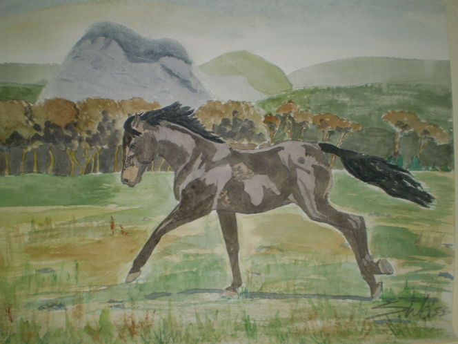 Rappe, Pferde, Baum, Gras, Tiere, Natur