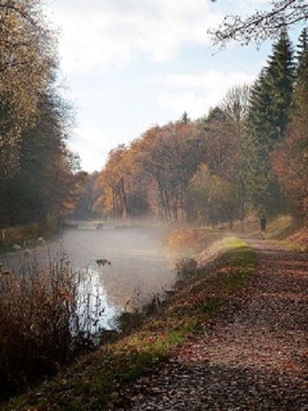 Nebel, Ludwigskanal, Herbst, Landschaft, Fotografie